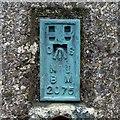 J3145 : Flush Bracket, Slieve Croob Triangulation Pillar by Rossographer