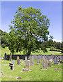 NO1020 : Burial ground, Kirkton of Mailer by William Starkey