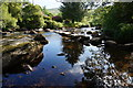 SX6773 : Stepping Stones, West Dart River. : Week 24