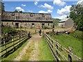 NN1826 : Brackley Farm : Week 26