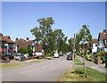 TQ3964 : Sylvan Way by Des Blenkinsopp