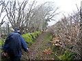 SN4535 : Hen heol Pencader old road by Alan Richards