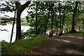 SW6425 : Bench overlooking The Loe by Bill Boaden