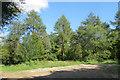 SP8909 : End of Entrance Track, Dancersend Nature Reserve by Chris Reynolds