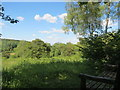 SP8909 : Looking over the Meadow Plots at Dancersend Reserve by Chris Reynolds