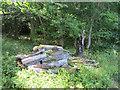 SP8909 : Rotting Wood Pile for Wildlife at Dancersend Reserve by Chris Reynolds