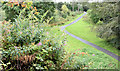 J3469 : Paths, Belvoir forest, Belfast (August 2014) by Albert Bridge
