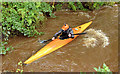 J3268 : Kayak, Minnowburn Bridge, Belfast - August 2014(1) by Albert Bridge