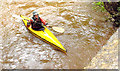J3268 : Kayak, Minnowburn Bridge, Belfast - August 2014(2) by Albert Bridge