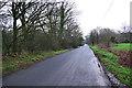 TQ4522 : Lane near Piltdown Golf Club by Robin Webster