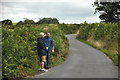 Dist:0.6km<br/>A small lane heading through North Devon and two people enjoying a walk along it.