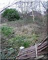 SP1094 : Landlocked backland between Jockey Road and Redacre Road, Boldmere by Robin Stott