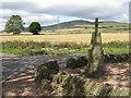 NO4038 : Angus landscape by M J Richardson