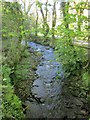 SX3470 : Haye Valley Stream by Derek Harper