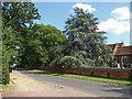 SU8772 : Church Lane, Warfield by Alan Hunt