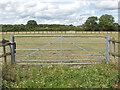 SU8672 : Paddocks off Bottle Lane by Alan Hunt