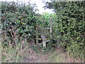 SJ3660 : Wooden Stile at Dodleston by Jeff Buck