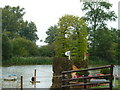 TF0406 : Fence 26, jump into the lake at Burghley Horse Trials by Jonathan Hutchins