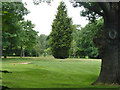 TQ3866 : Langley Park golf course by Robin Webster
