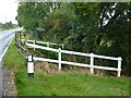 TL3476 : Cuckoo Bridge near Somersham by Richard Humphrey