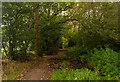 SJ7772 : Woodend Farm by Peter McDermott
