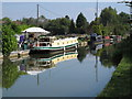 SP8713 : Narrowboats at permanent mooring, Aylesbury Arm by David Hawgood