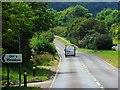 SU5429 : A31, Arlesford Road, near Ovington by David Dixon