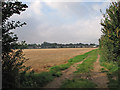 TL4949 : Stubble on the edge of Sawston by John Sutton