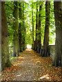 SU3875 : Path from church, Great Shefford : Week 39