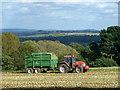 SU2694 : Harvesting on Badbury Hill : Week 39