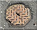 J4273 : Octagonal access cover, Dundonald by Albert Bridge