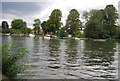 SU8987 : River Thames by N Chadwick