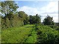 TL4674 : Fenside south of Haddenham by Richard Humphrey