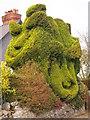 SH5576 : Topiary, Llansadwrn : Week 43