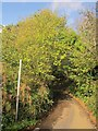 SX5058 : Blunt's Lane by Derek Harper