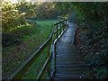 SU8969 : Boardwalk, Longhill Park by Alan Hunt