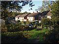 SU8969 : Timline Green by Alan Hunt