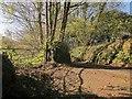 SX3969 : Track meeting Callington Road by Derek Harper