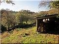 SX3869 : Woodshed, West Cleave by Derek Harper