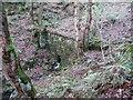 SE0228 : Retaining wall across a clough by Humphrey Bolton