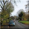 TL4346 : Thriplow: School Lane in November by John Sutton