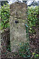 SP3620 : Benchmark on old gatepost by Roger Templeman