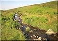 SX5386 : River Lyd by Derek Harper