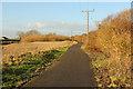 TF1069 : Water Rail Way by Richard Croft