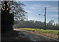 TL5561 : Sunlit cables by John Sutton