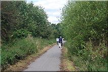 SE3157 : Nidd Valley line by N Chadwick
