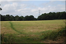 SE3057 : Field by the old Nidd Valley line by N Chadwick