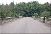 SE3058 : Nidd Viaduct by N Chadwick