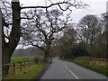 SJ5365 : Willington Lane by David Smith