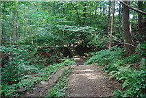 SE3158 : Harrogate Ringway, Nidd Gorge by N Chadwick